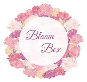 Bloom box 2x